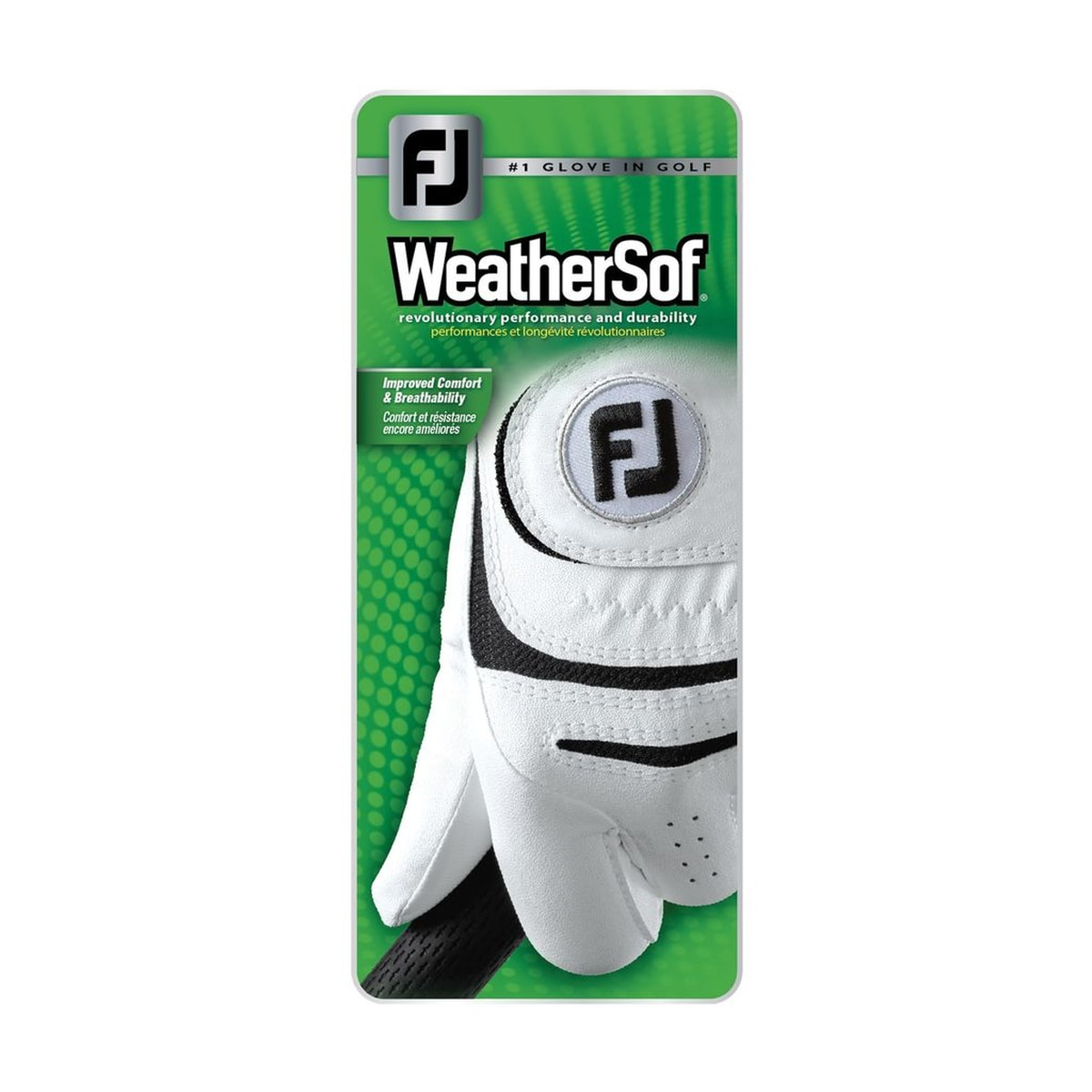 WeatherSof-Prior Generation